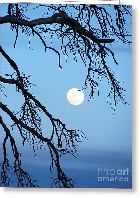 Full Moon Blue Sky Greeting Card