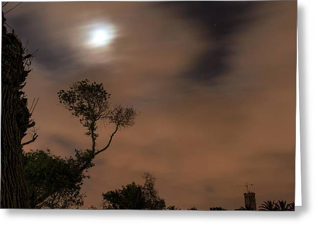 Greeting Card featuring the photograph Full Moon In The Park by Dubi Roman