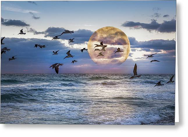 Full Moon Moment Greeting Card by Debra and Dave Vanderlaan