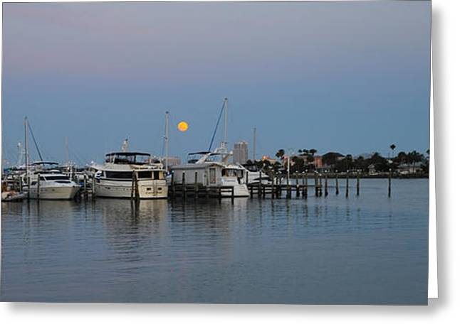 Full Moon Over Clearwater Beach Marina Greeting Card by Bill Cannon