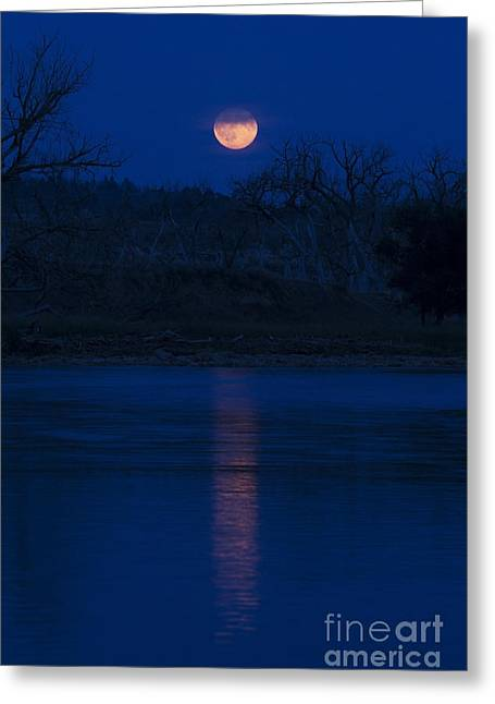 Full Moon Over The Tongue Greeting Card by Shevin Childers