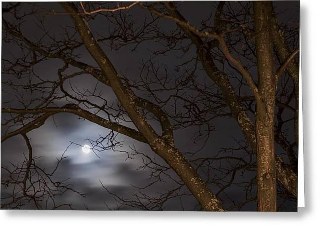 Full Moon Rising - 1  Greeting Card by Hany J