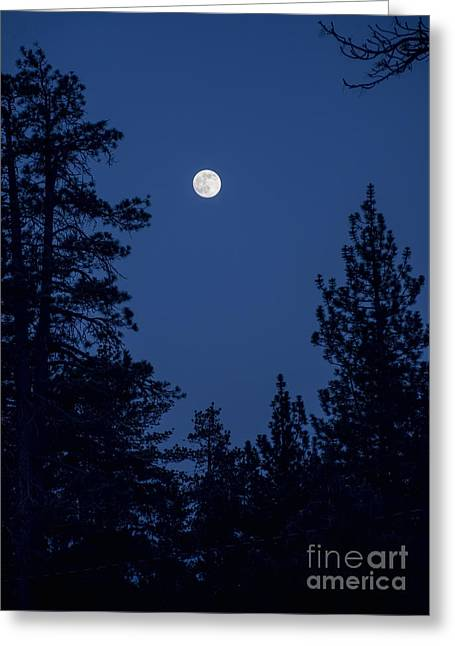 Full Moon Rising Greeting Card by Eddie Yerkish