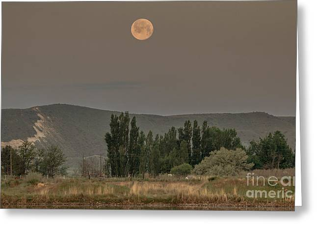 Full Moon Setting Greeting Card by Robert Bales