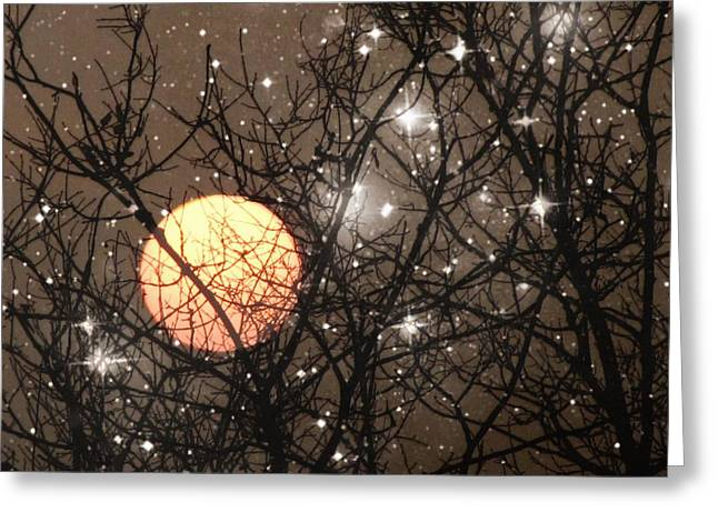 Full Moon Starry Night Greeting Card by Marianna Mills