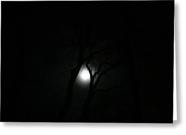 Greeting Card featuring the photograph Full Moon Through Trees by Marilyn Hunt