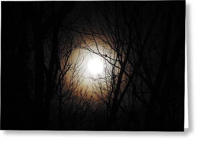 Full Pink Moon Rising Greeting Card by Traci York