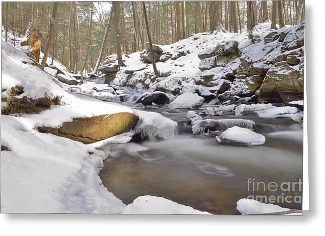 Full Scene  Winter Pool Greeting Card