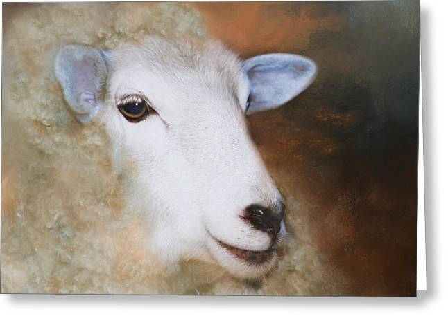 Greeting Card featuring the photograph Fully Woolly by Robin-Lee Vieira