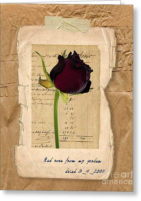 Funeral For A Friend Greeting Card by Gillian Singleton