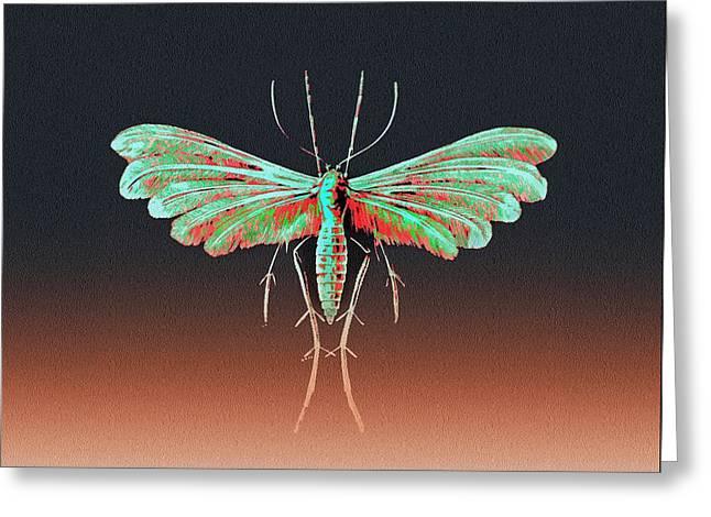 Fungus Moth In Greens Greeting Card by Diane Addis