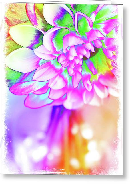 Funky Dahlia Greeting Card