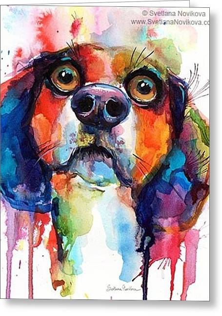 Funny Beagle Watercolor Portrait By Greeting Card