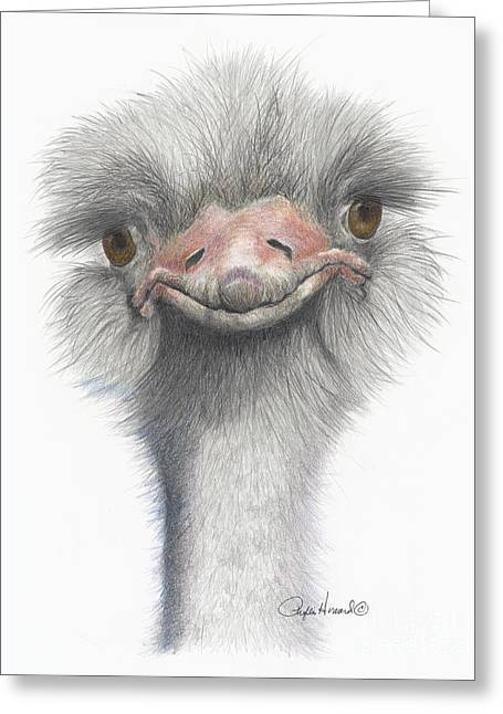 Greeting Card featuring the drawing Funny Face by Phyllis Howard