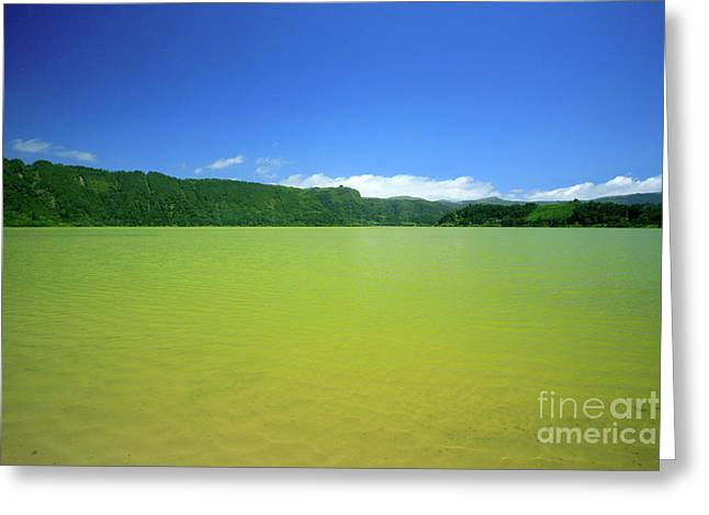 Furnas Lake - Azores Greeting Card by Gaspar Avila