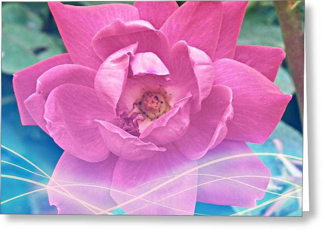 Fuschia Flower Energy Greeting Card