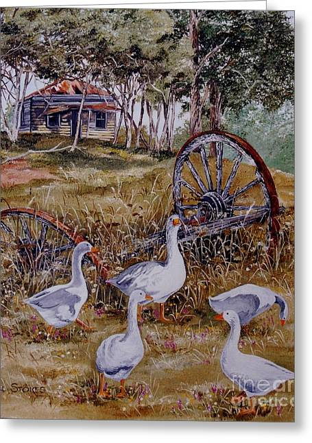 Gaggling Geese Greeting Card by Val Stokes