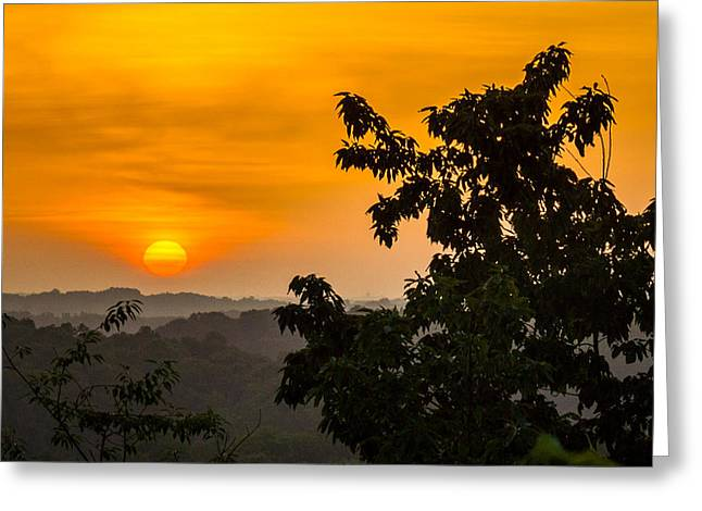 Gainesville Sunrise Greeting Card by Michael Sussman