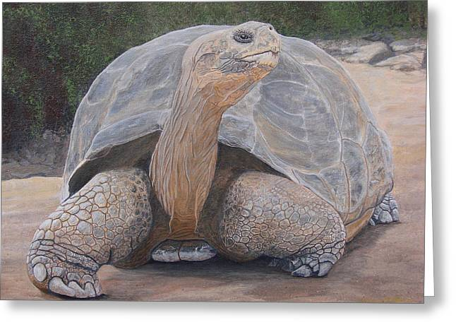 Galapagos Tortoise Greeting Card by Jeffrey Oldham