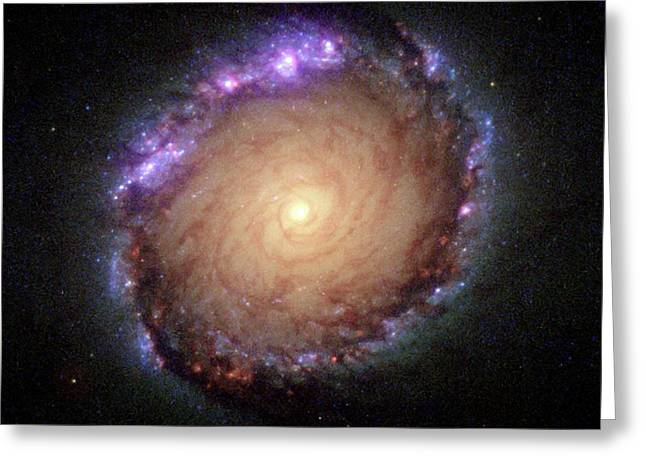 Galaxy Ngc 1512 Greeting Card by Hubble Space Telescope