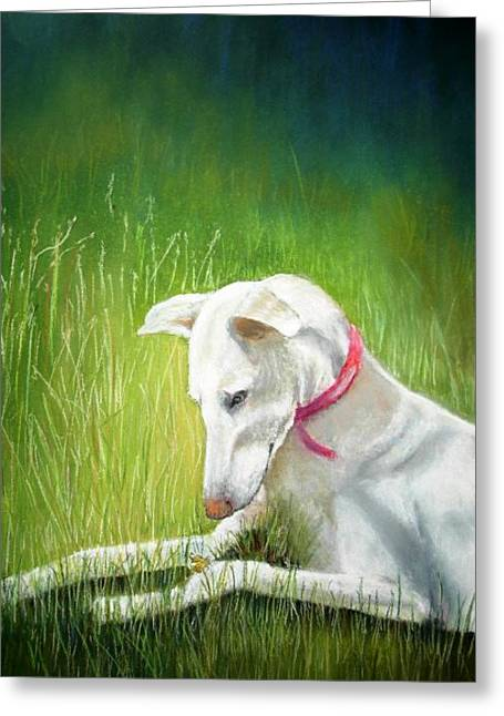Greeting Card featuring the painting Galga by Ceci Watson