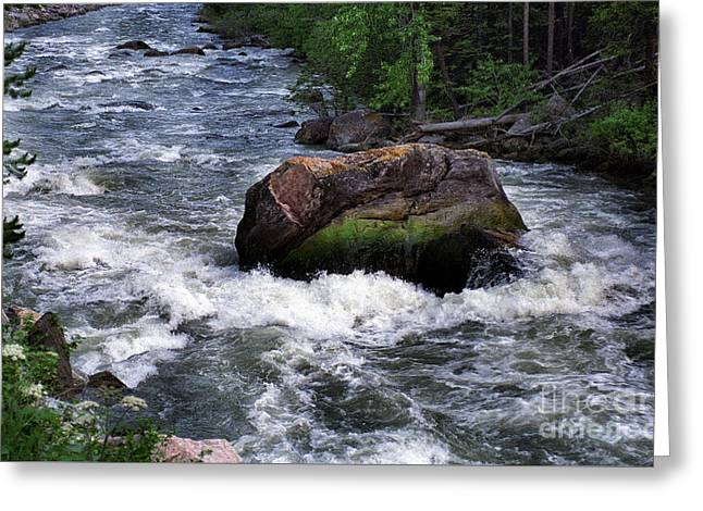 Gallatin River House Rock Greeting Card by Timothy Hacker