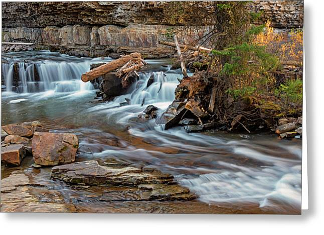 Gallatin River Montana Greeting Card by Loree Johnson