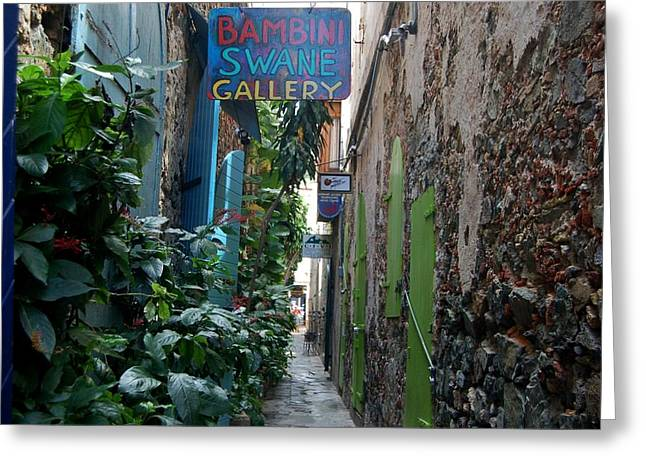 Gallery Alley Greeting Card by Christopher James