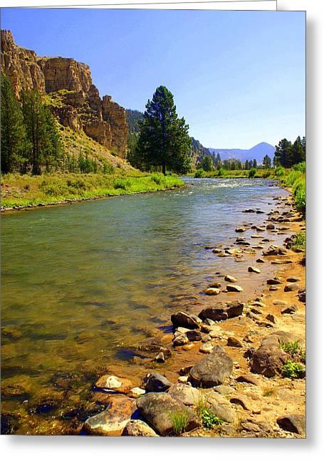 Gallitan River 1 Greeting Card by Marty Koch
