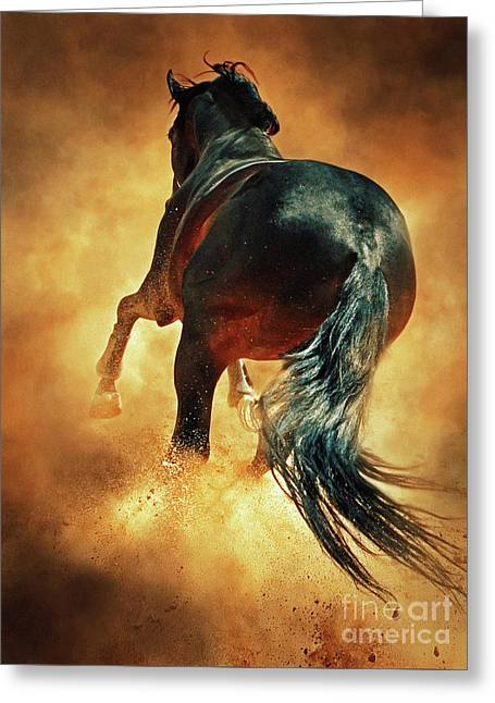 Galloping Horse In Fire Dust Greeting Card by Dimitar Hristov