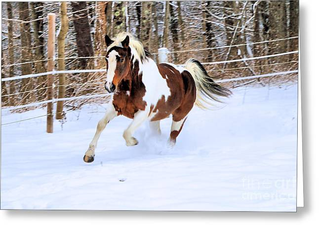 Galloping In The Snow Greeting Card