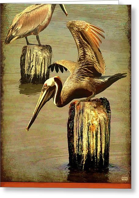 Galveston Island State Park Greeting Card by Jim Sanders