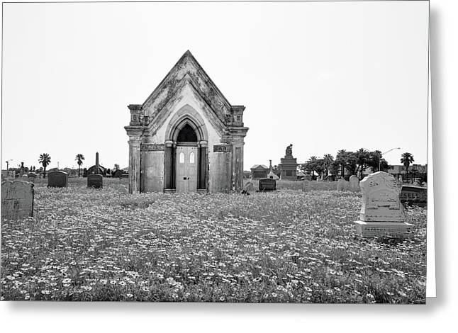 Galveston Old City Cemetery Greeting Card by Steven Michael