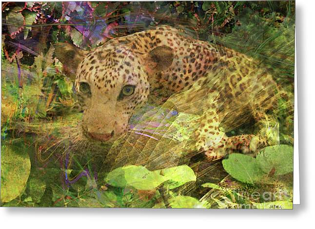 Game Spotting Greeting Card by John Beck