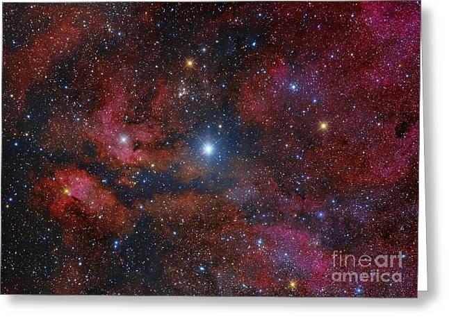 Gamma Cygni Star And Its Surroundings Greeting Card by Roberto Colombari