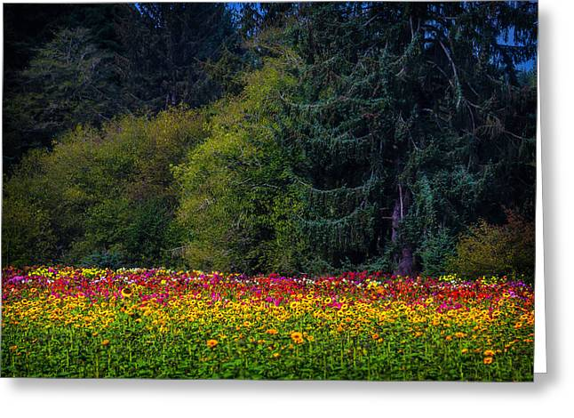 Garden And Forest Greeting Card by Garry Gay