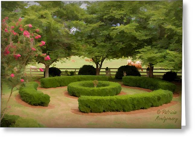 Garden At Colonial Heights Greeting Card