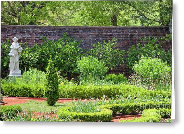 Garden At Tryon Palace Greeting Card by Jill Lang