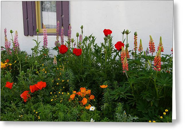Garden Beauty Greeting Card by Sharon I Williams