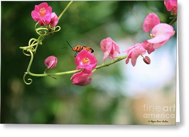 Greeting Card featuring the photograph Garden Bug by Megan Dirsa-DuBois