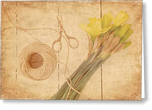 Garden Clippings - Daffodils Greeting Card by Kim Hojnacki