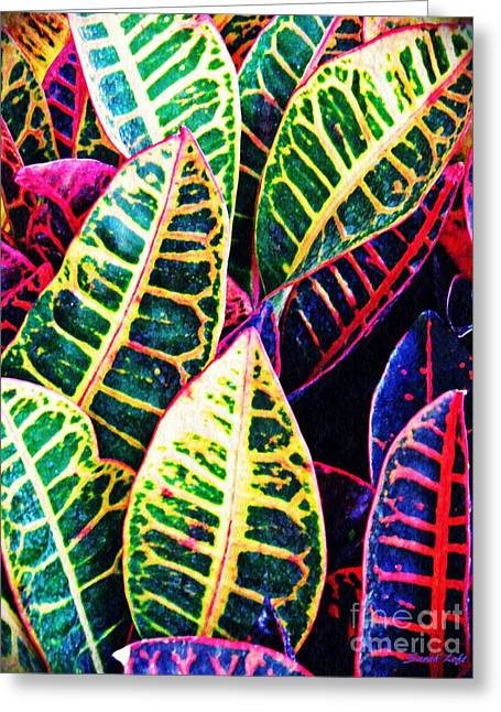 Garden Croton 2 Greeting Card by Sarah Loft