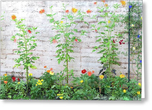 Greeting Card featuring the photograph Garden Florals by Carolyn Dalessandro