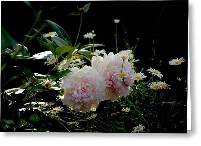 Garden Greeting Card by Gillis Cone