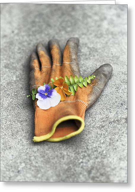 Garden Glove And Pansy Blossoms1 Greeting Card