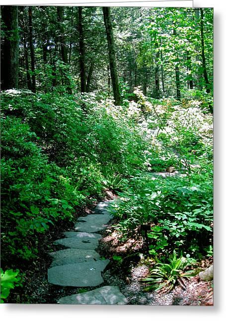 Garden In The Woods Greeting Card by Deborah Dendler