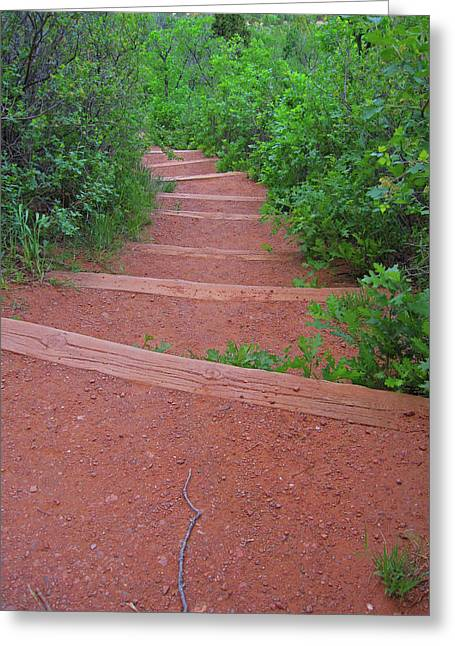 Garden Of The Gods Steps Greeting Card by Tammy Sutherland