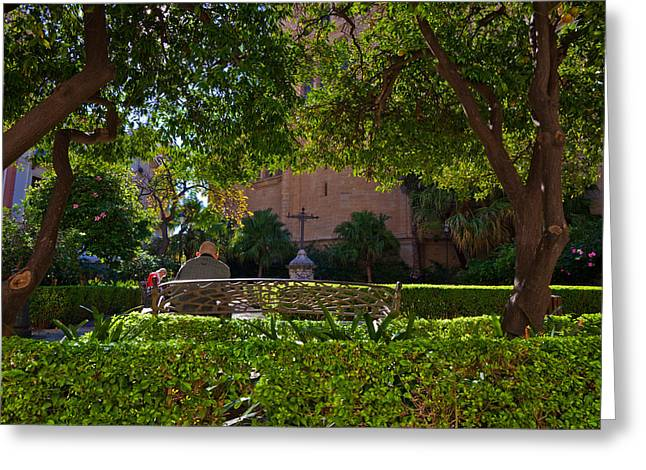 Garden Outside Malagas Cathedral Greeting Card by Panoramic Images