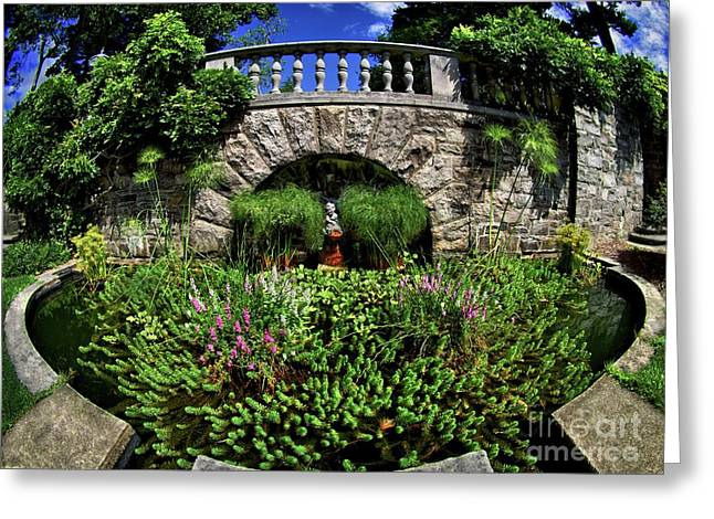 Garden Pond Greeting Card by Mark Miller