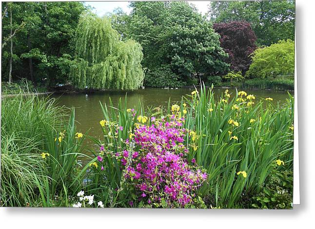 Garden Pond Near Buckingham Palace  Greeting Card